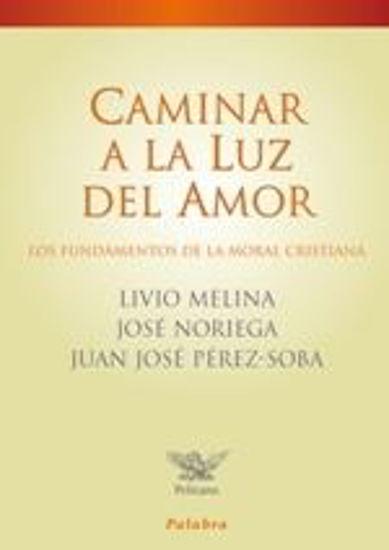 Picture of CAMINAR A LA LUZ DEL AMOR