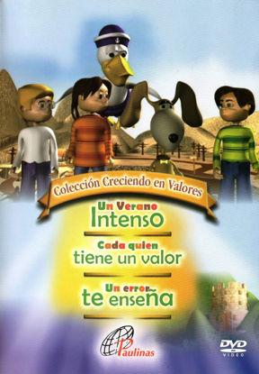 Picture of DVD.UN VERANO INTENSO CADA QUIEN TIENE UN VALOR UN ERROR TE ENSEÑA