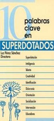 Foto de 10 PALABRAS CLAVE EN SUPERDOTADOS #3
